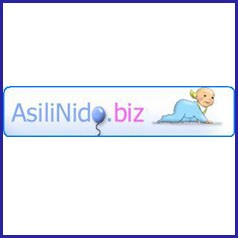 asilinido.biz