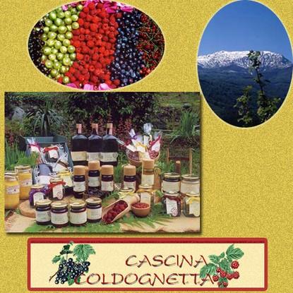 Immagine locale AGRITURISMO BIOCLIMATICO CASCINA COLDOGNETTA