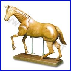 Manichino legno cavallo snodabile