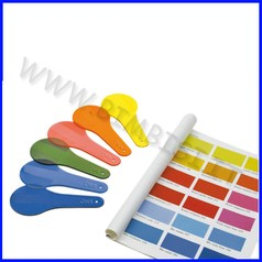 Palette colorate trasparenti esacromia set 6 pz